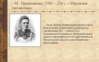 Краткая биография войнич