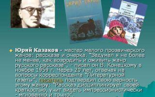 Сочинения об авторе казаков