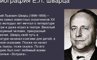 Краткая биография шварц