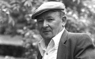 Краткая биография ваншенкин
