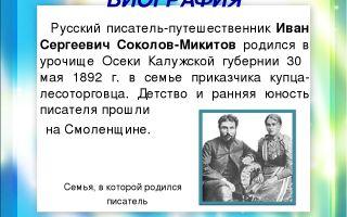 Краткая биография соколов