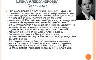 Краткая биография благинина