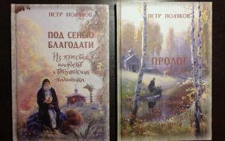Сочинения об авторе поляков