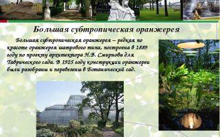 Краткая биография сад