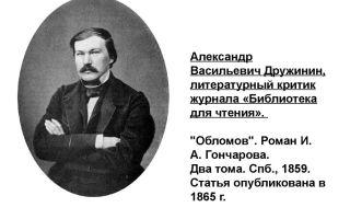 Краткая биография дружинин