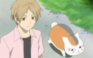 Краткая биография нацумэ