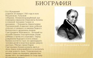 Краткая биография жуковский