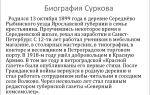 Краткая биография сурков