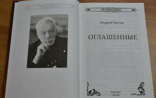 Сочинения об авторе битов