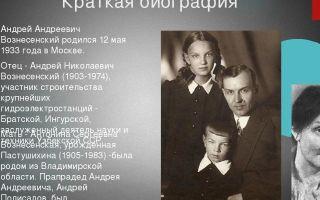 Краткая биография вознесенский
