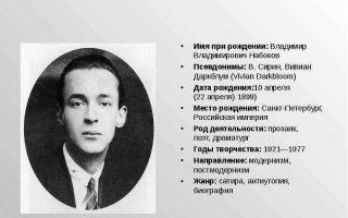 Краткая биография набоков