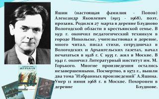 Краткая биография яшин