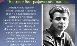 Краткая биография есенин